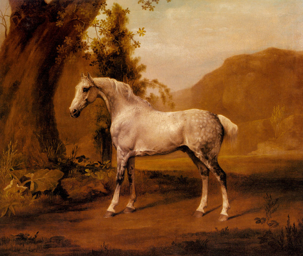 George Stubbs. Landscape with grey horse