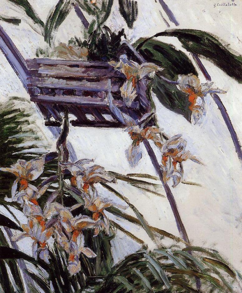 Гюстав Кайботт. Орхидеи