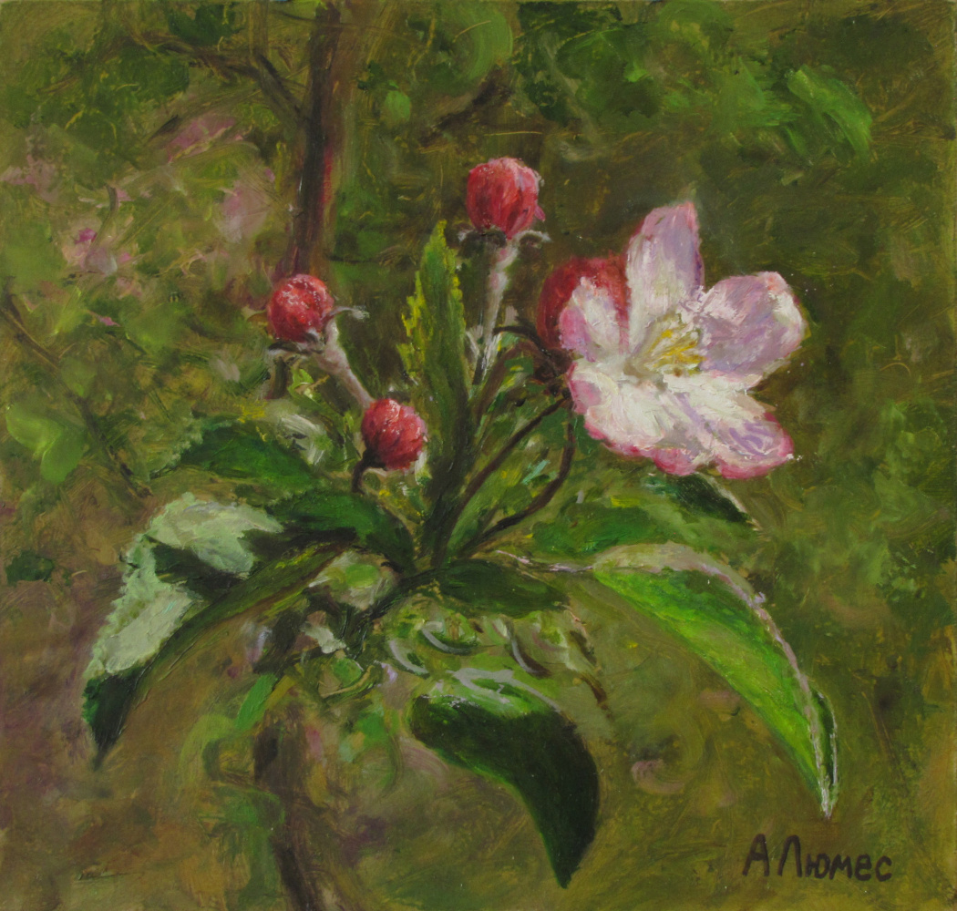 Andrew Lumez. Bloom