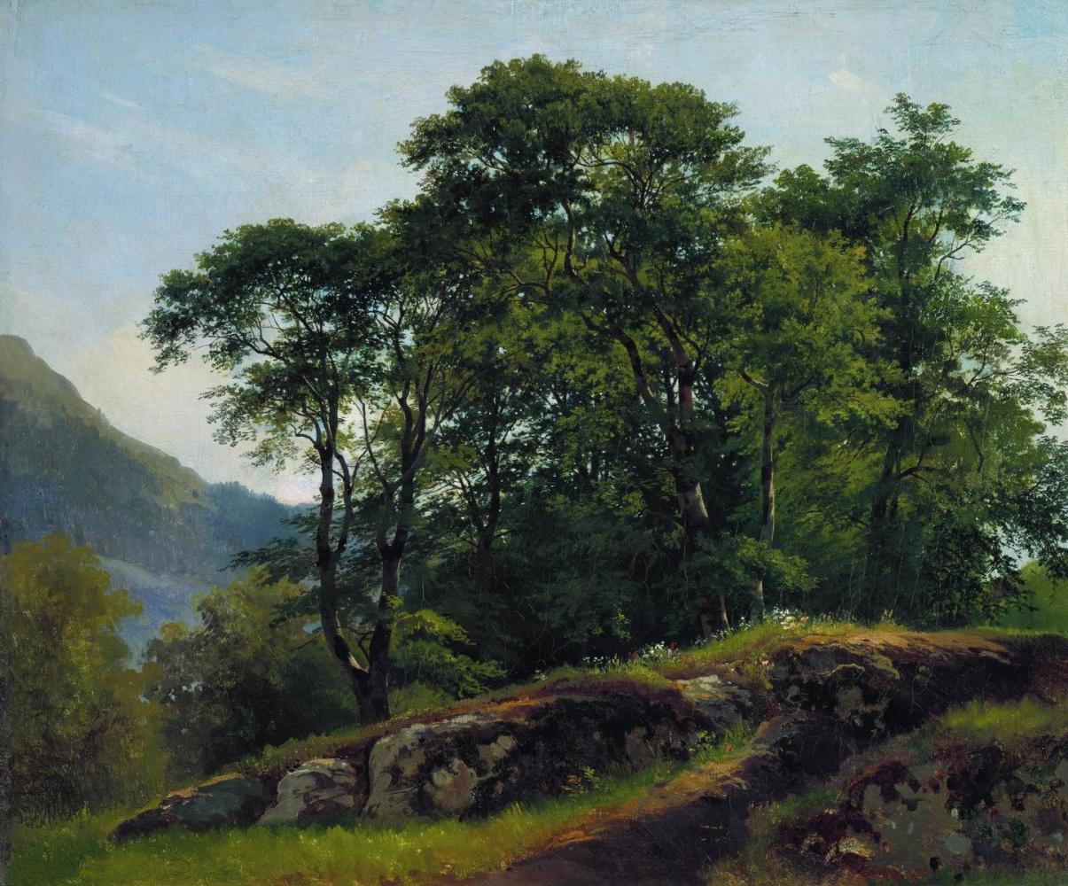 Иван Иванович Шишкин. Буковый лес в Швейцарии