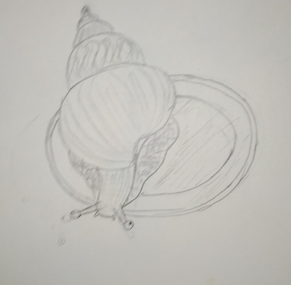 Zina Vladimirovna Parisva. Snail