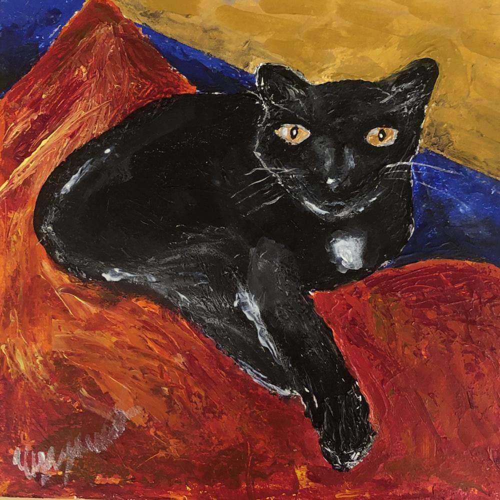 Phaque u parce que. Black cat on orange pillow on blue sofa