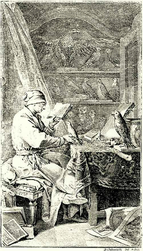 Даниэль  Николай Ходовецкий. Птицы