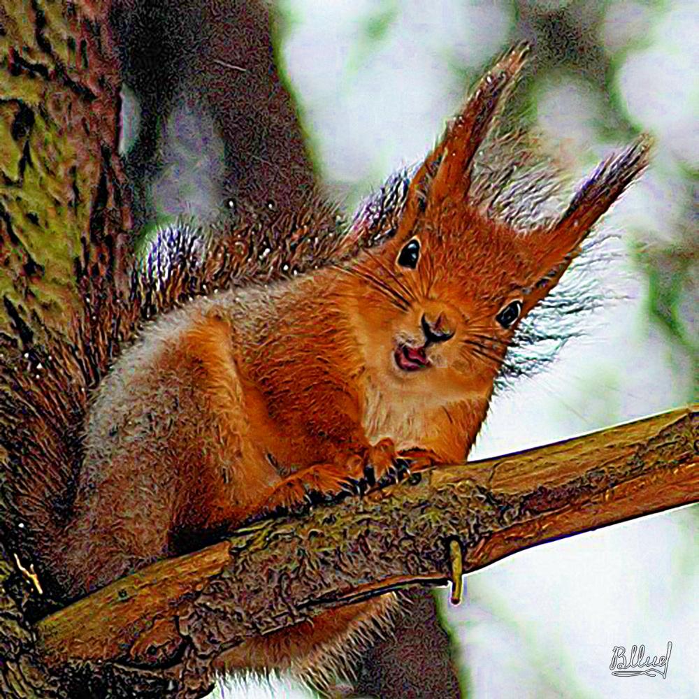 Vasiliy Mishchenko. Squirrel