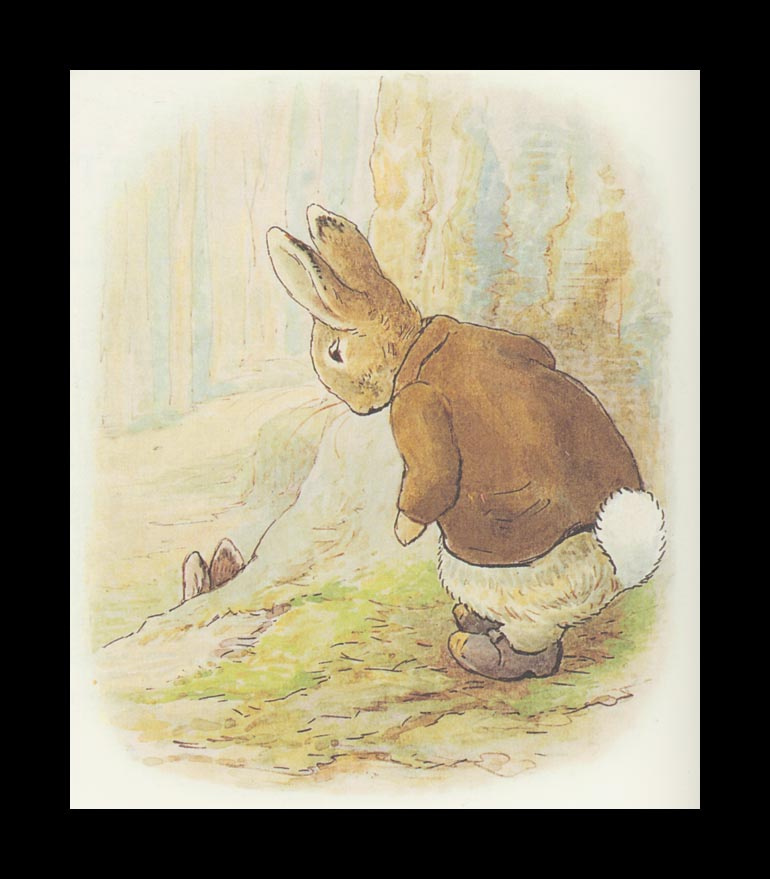 Бенджамин и Кролик Питер Банни. Сказка о кролике Питере 24