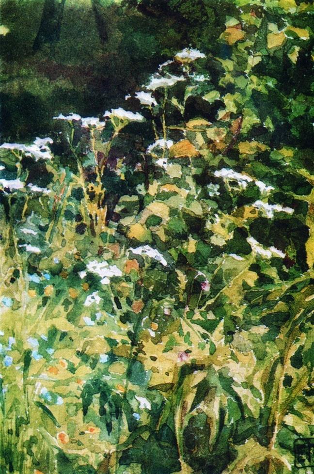 Elena Dmitrievna Polenova. White Yarrow Flowers
