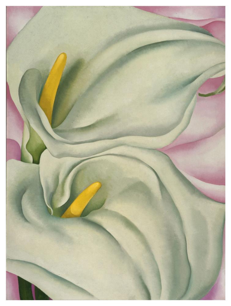 Джорджия О'Киф. Две каллы на розовом