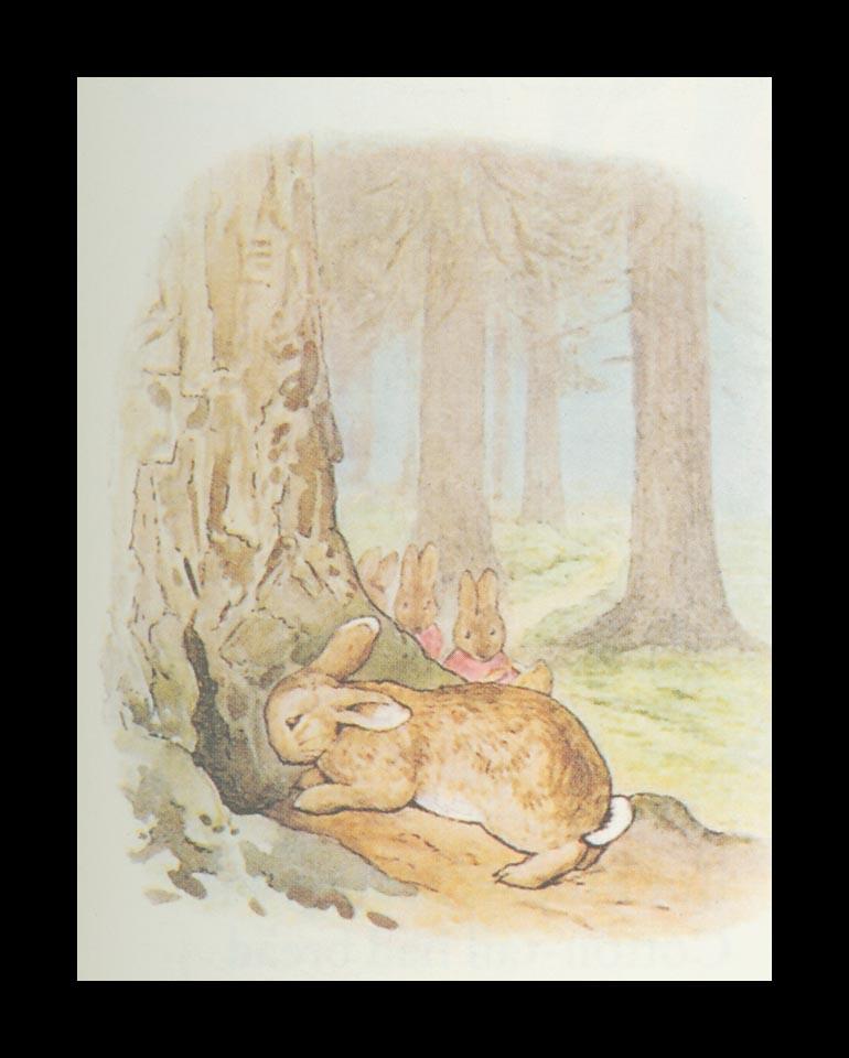 Бенджамин и Кролик Питер Банни. Сказка о кролике Питере 38