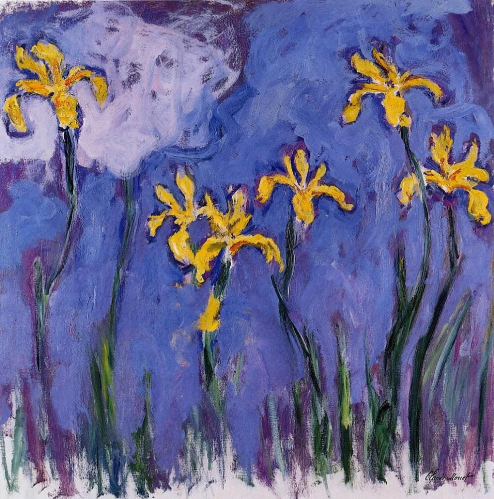 Claude Monet. Yellow irises with pink cloud