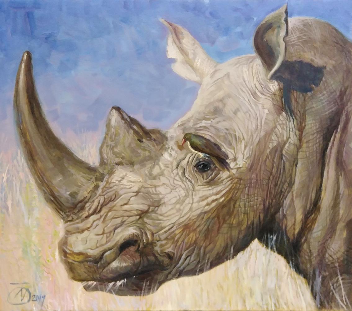 Evgeny Kovalchuk. Rhino and ..