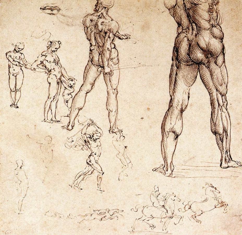 Anatomical drawings by Leonardo da Vinci: History, Analysis & Facts