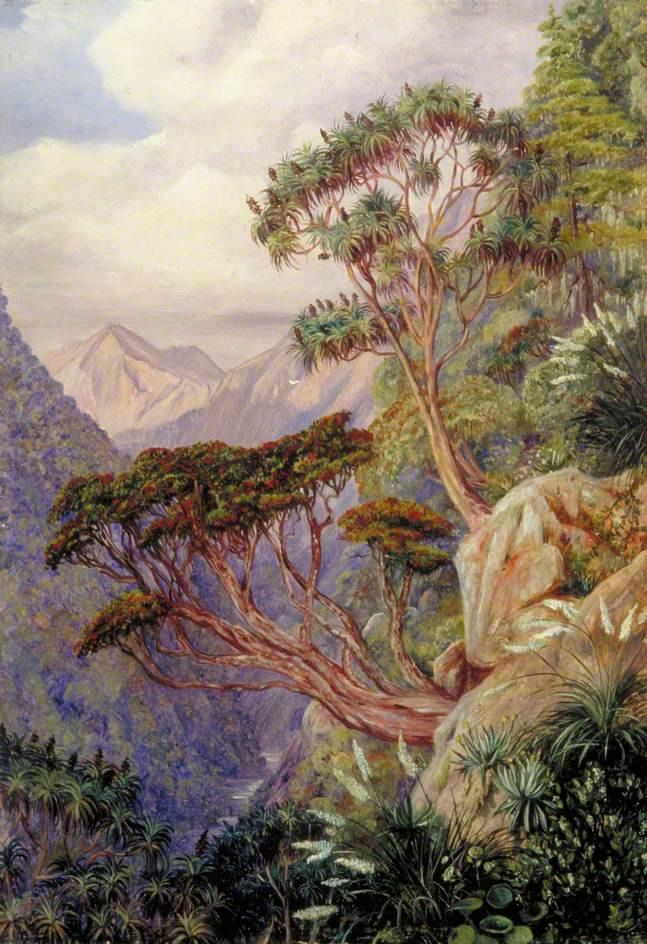 Марианна Норт. Горное ущелье, Новая Зеландия