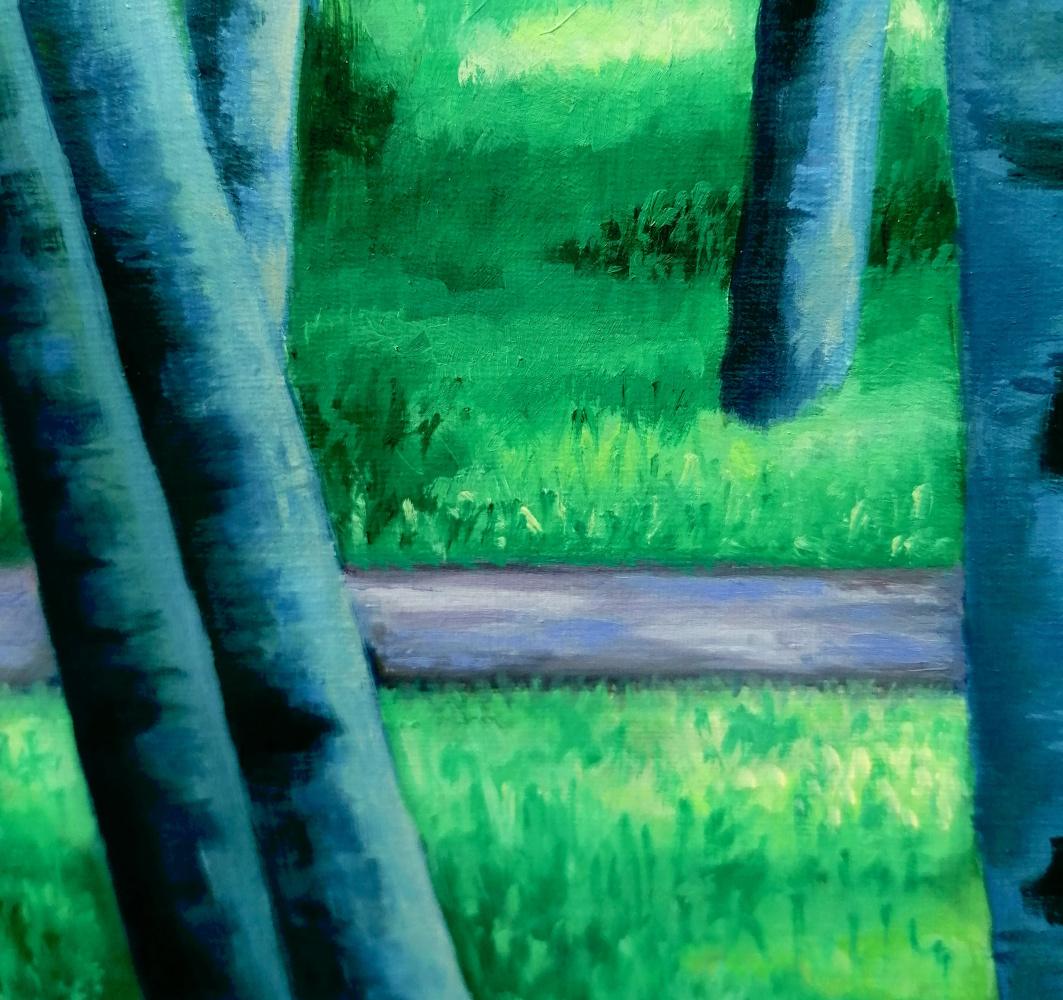 Birches in a summer park