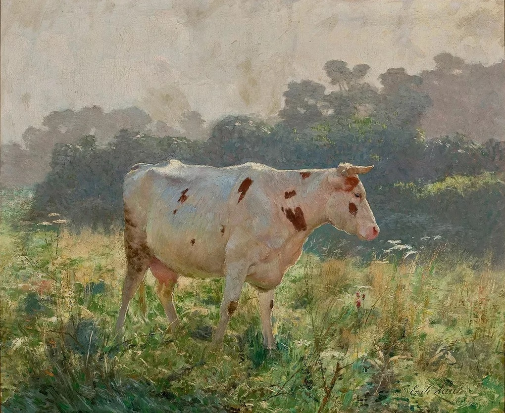 Emil Klaus. Cow in the meadow