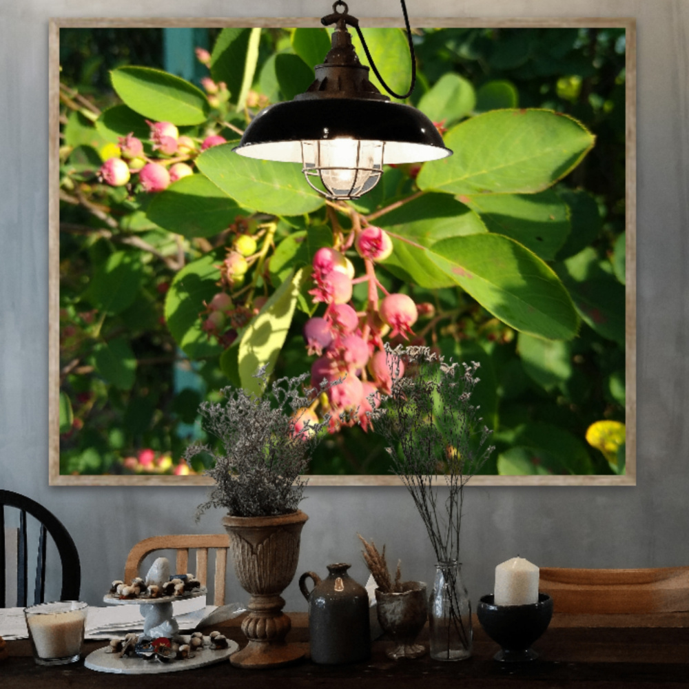 Natalya Garber. Fruits under the lamp. Photoart for a delicious space of family creativity