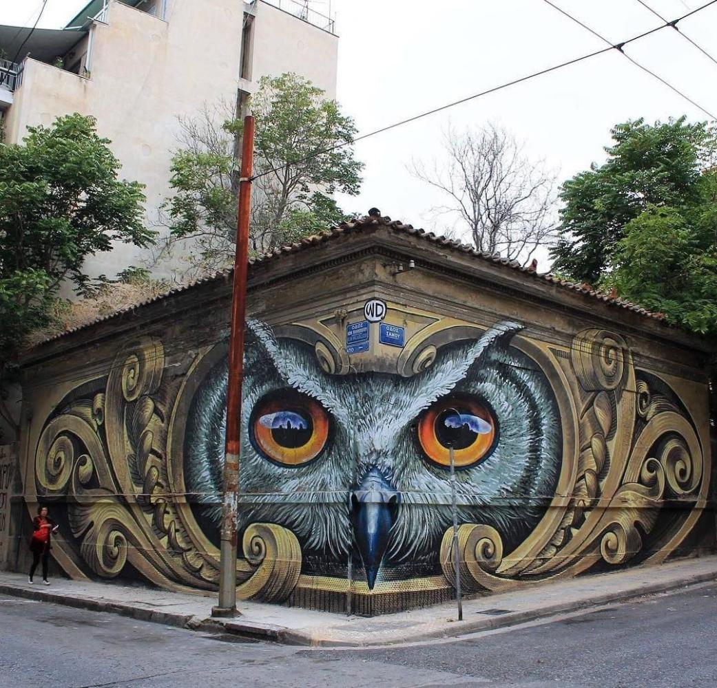 WD. Owl