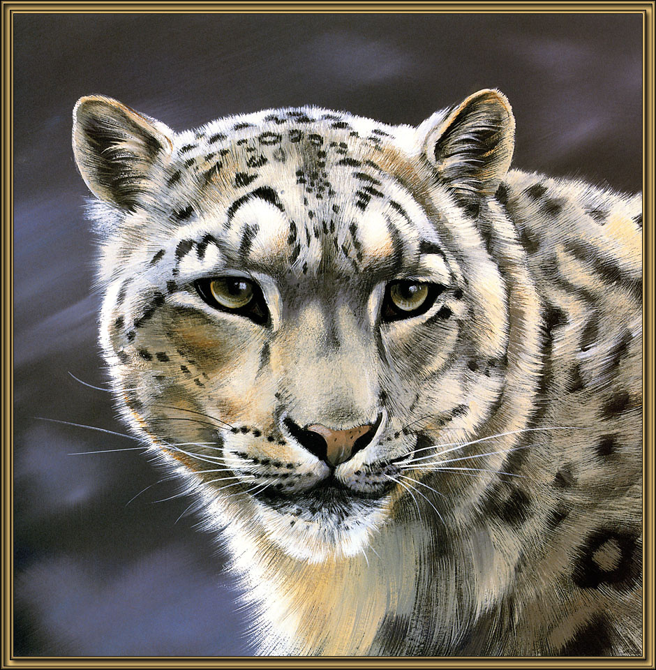 Поллианна Пикеринг. Большие кошки 04