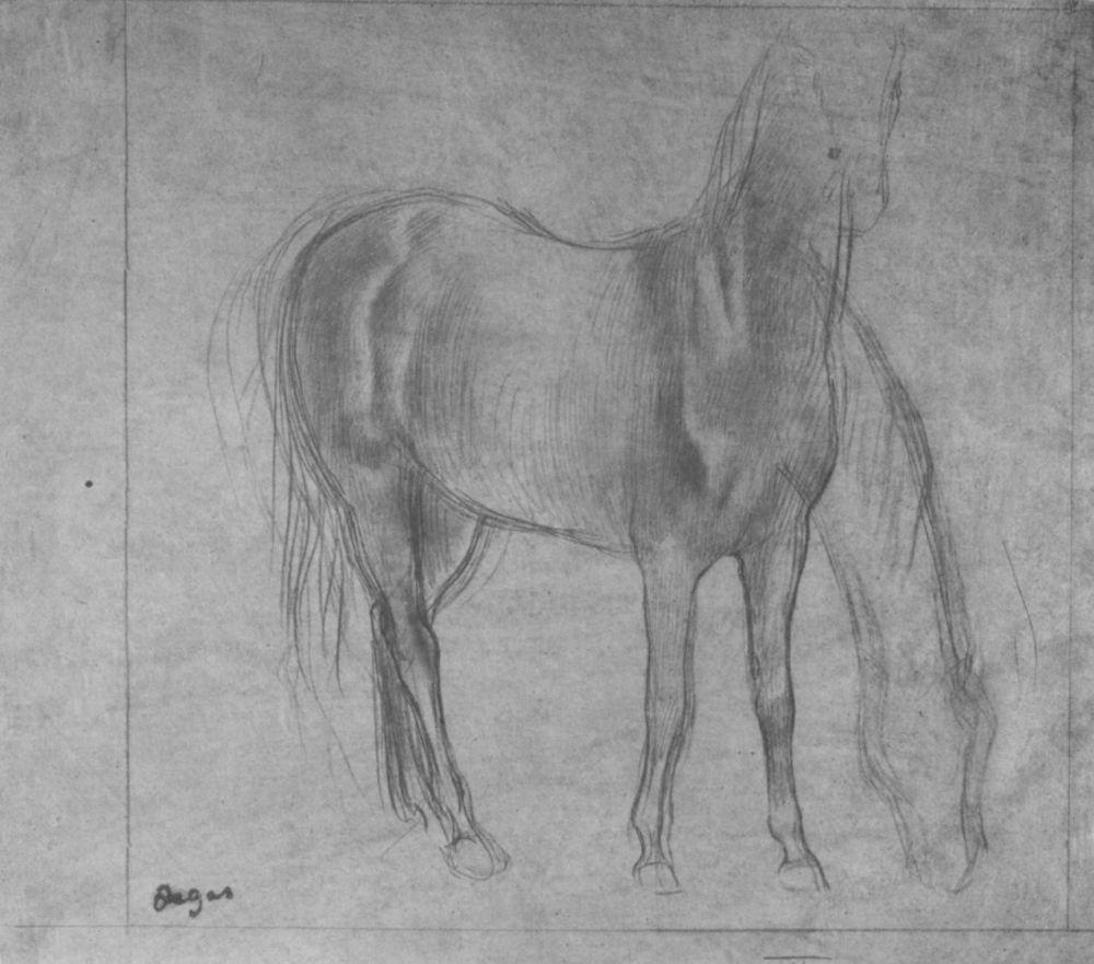 Эдгар Дега. Стоящая лошадь