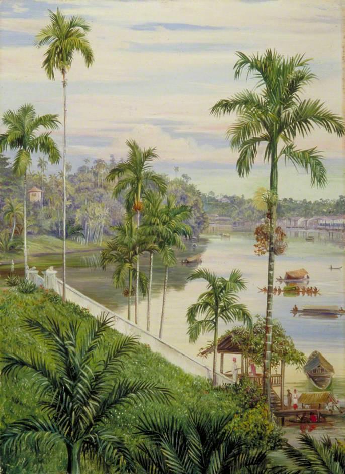 Марианна Норт. Вид на реку, Саравак, Борнео