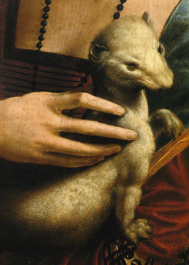 Leonardo da Vinci. Lady with an ermine (fragment)