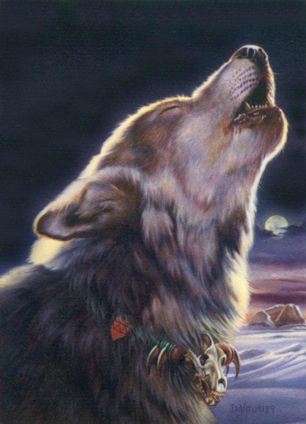 Joseph de Vito. The wolf howls