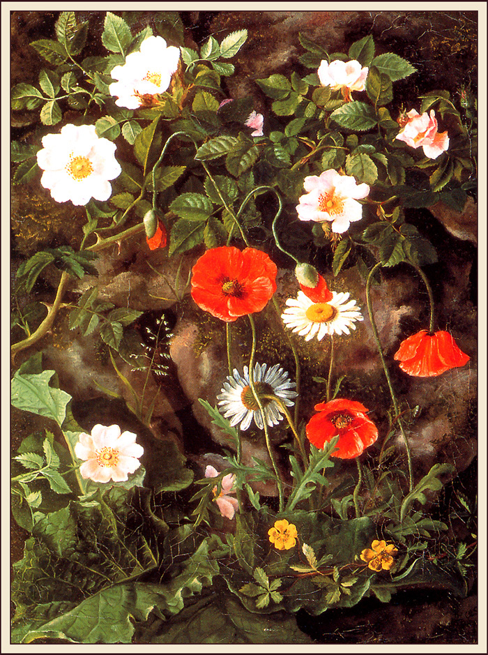 Augusta Laesso. Wild roses and poppies
