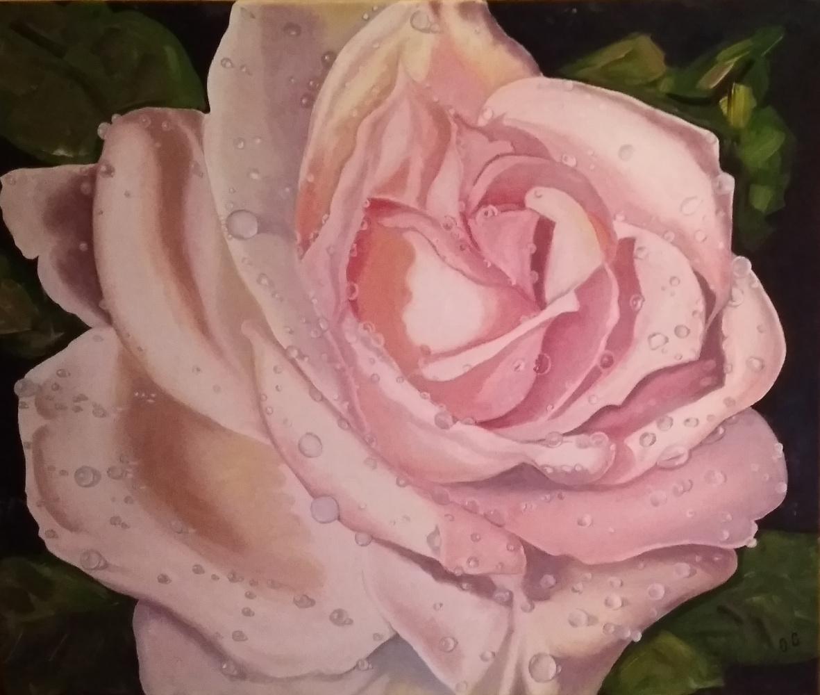 Olga Pavlovna Georgieva. Rose flower