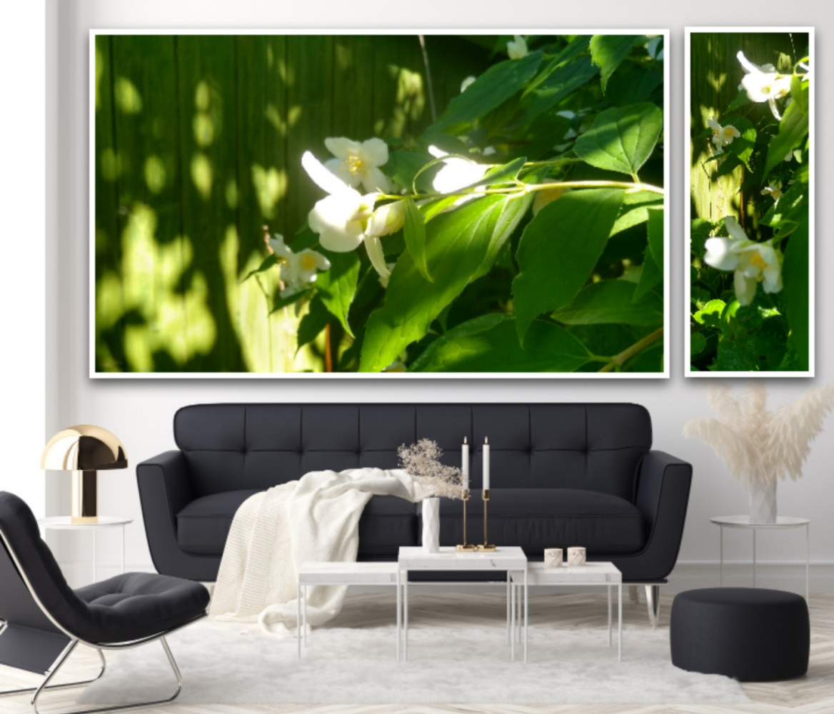 Natalya Garber. Sunny jasmine. Photo duo to bring warmth to a cool home