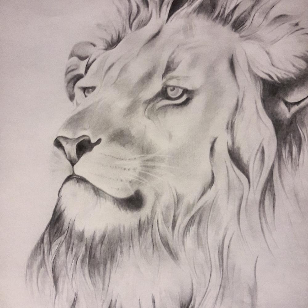 Catherine Ignatov. A lion