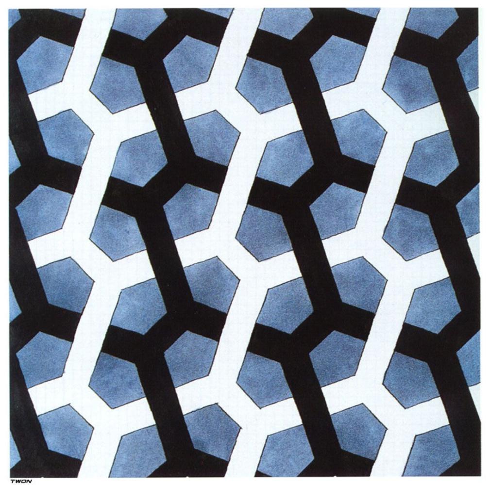 Maurits Cornelis Escher. Interlaced Hexagon