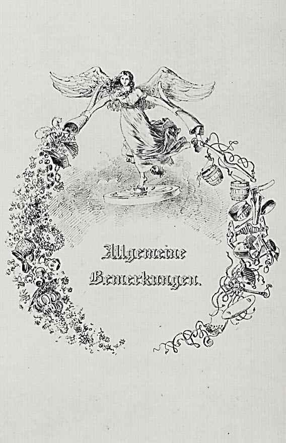 """Адольф фон Менцель. """"Альбом для увековечения памяти о важных событиях семейной жизни"""", Заметки общего характера"""