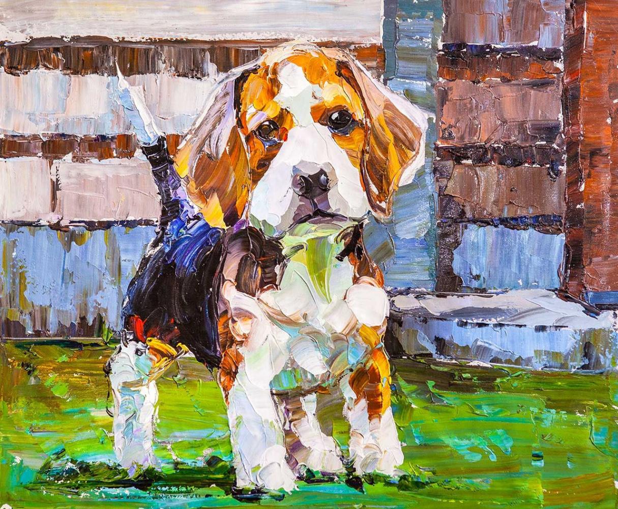 Jose Rodriguez. Beagle. Loyal friend N2