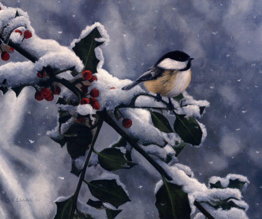 Открытки с добрым снежным утром мерцающие, анечка