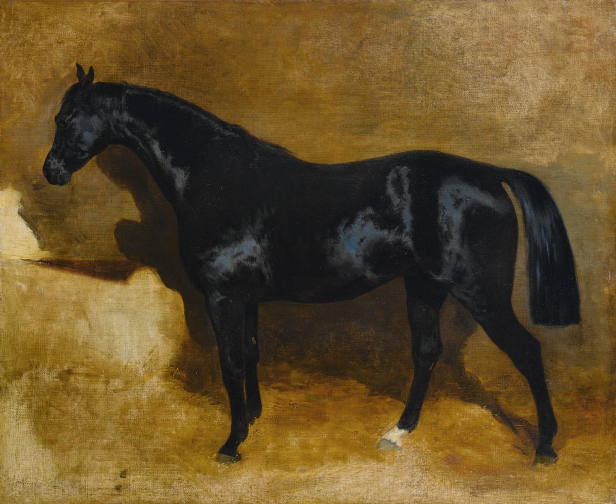 Теодор Жерико. Вороная лошадь в стойле