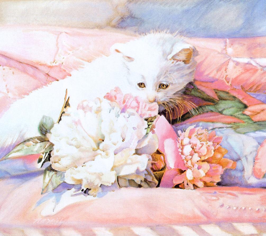 Nancy Noel. Kitty