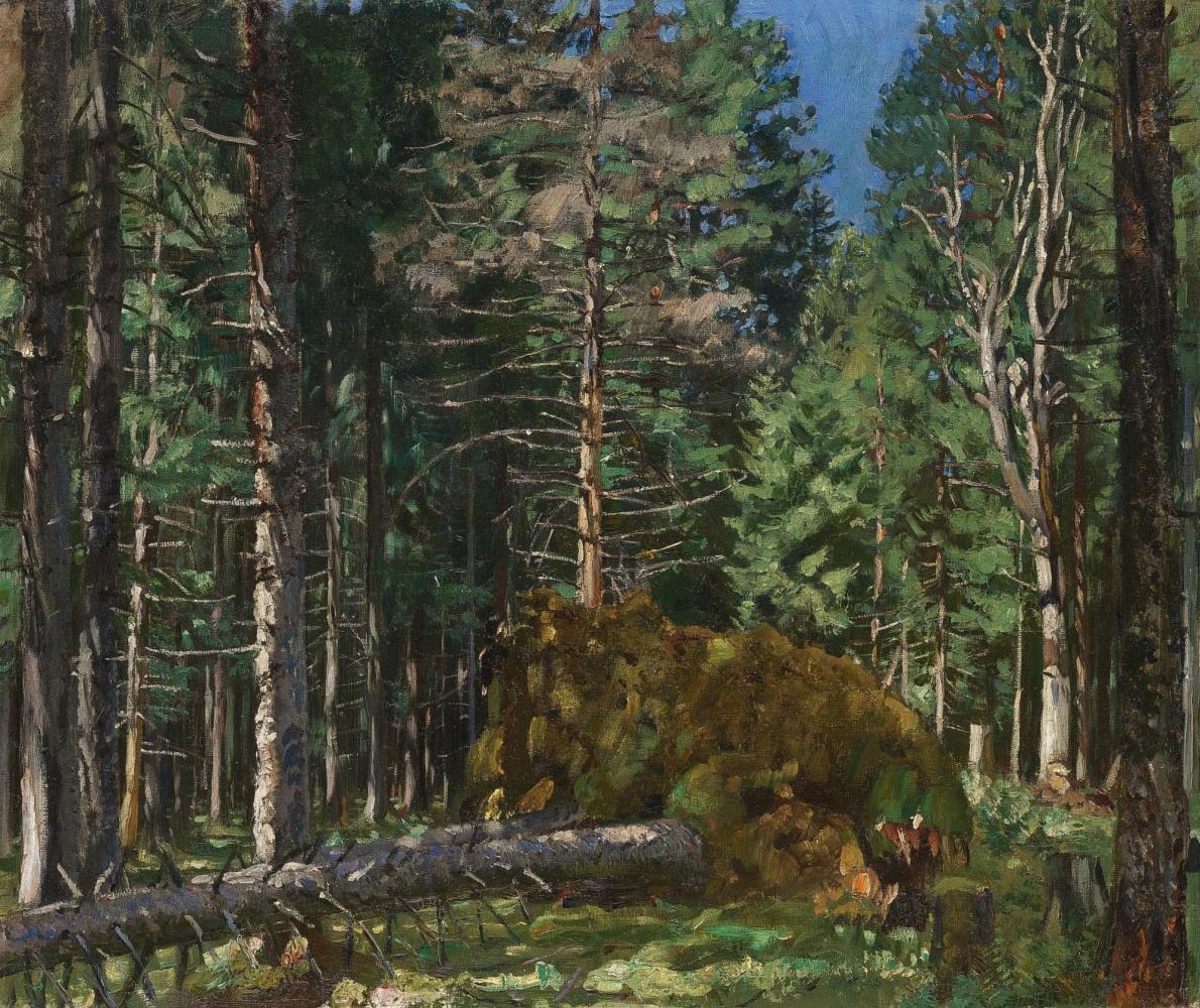 Станислав Юлианович Жуковский. Сосновый лес, утро