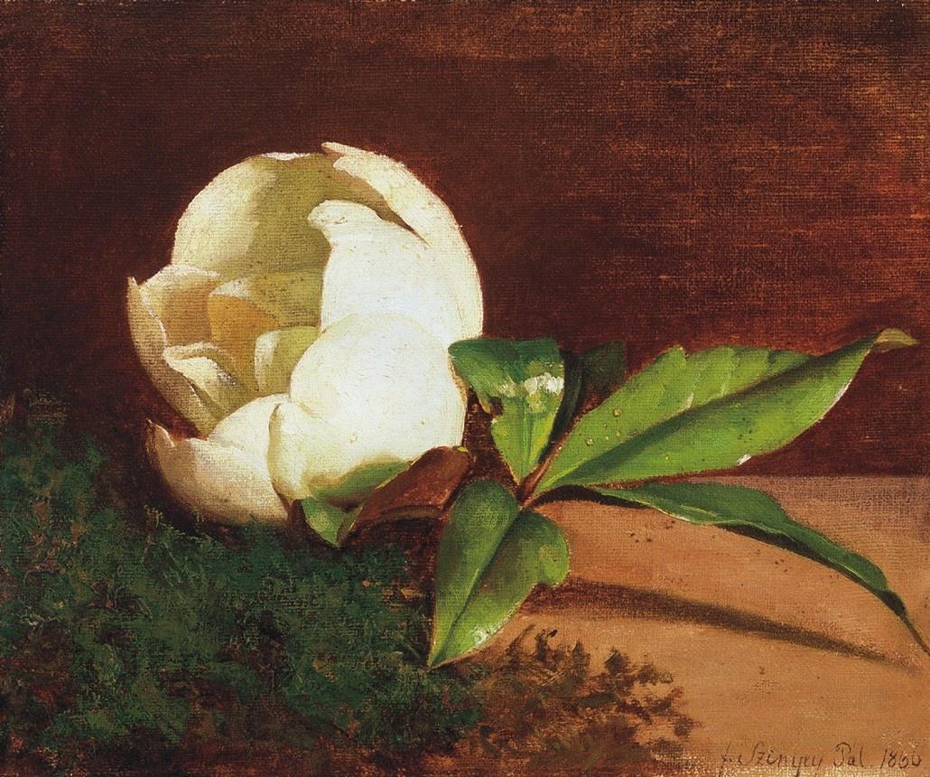 Pál Szinyei Merse. White magnolia