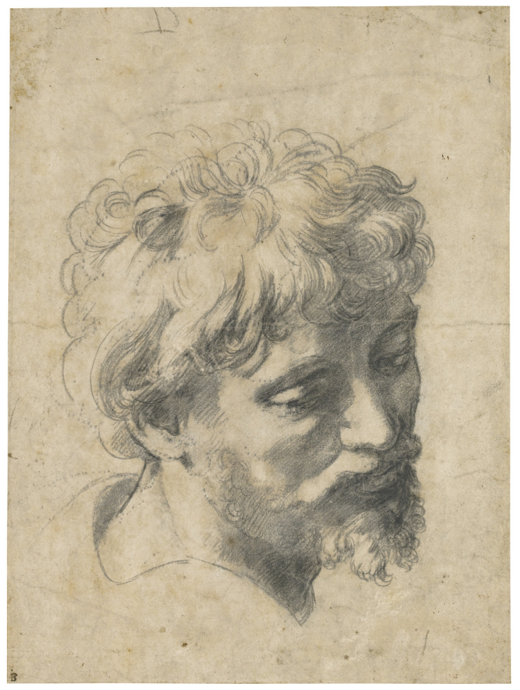 """Raphael Sanzio. Head of a young Apostle. The sketch for the painting """"the Transfiguration"""""""
