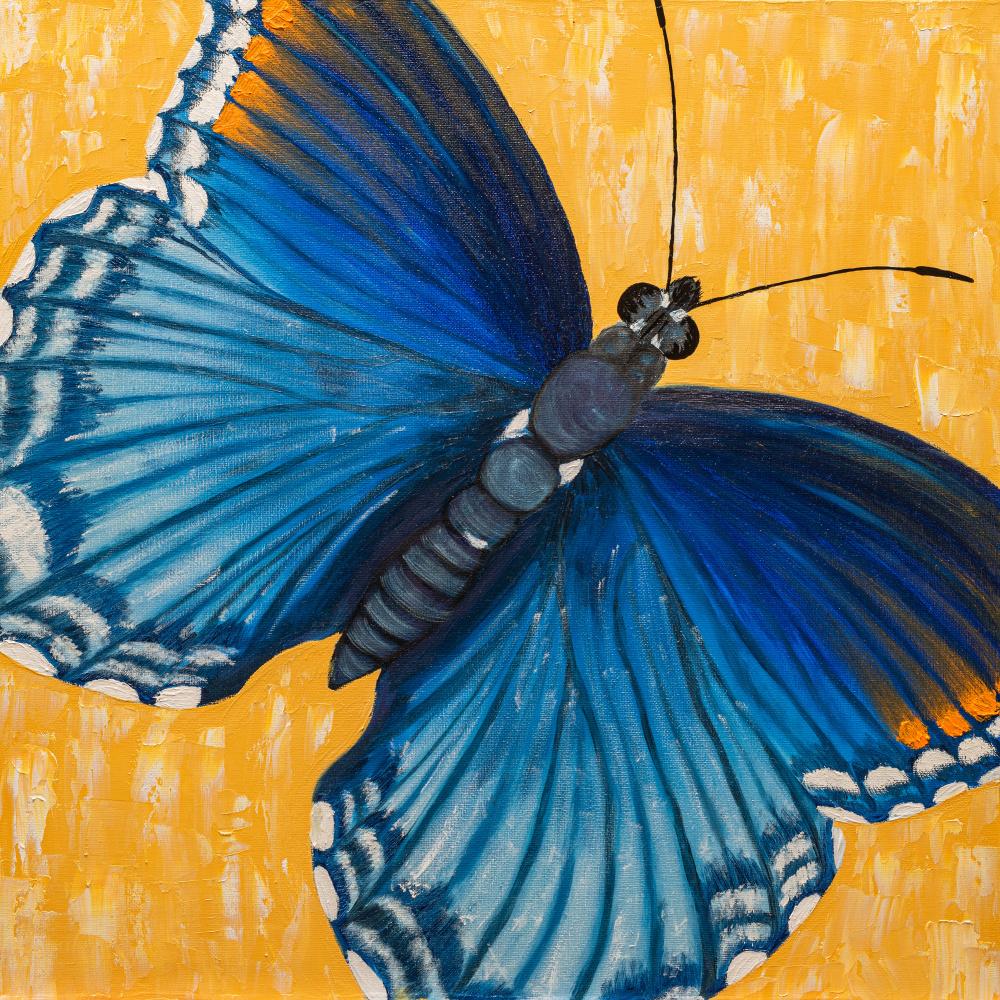 Arina Yuryevna Yastrebova. Butterfly