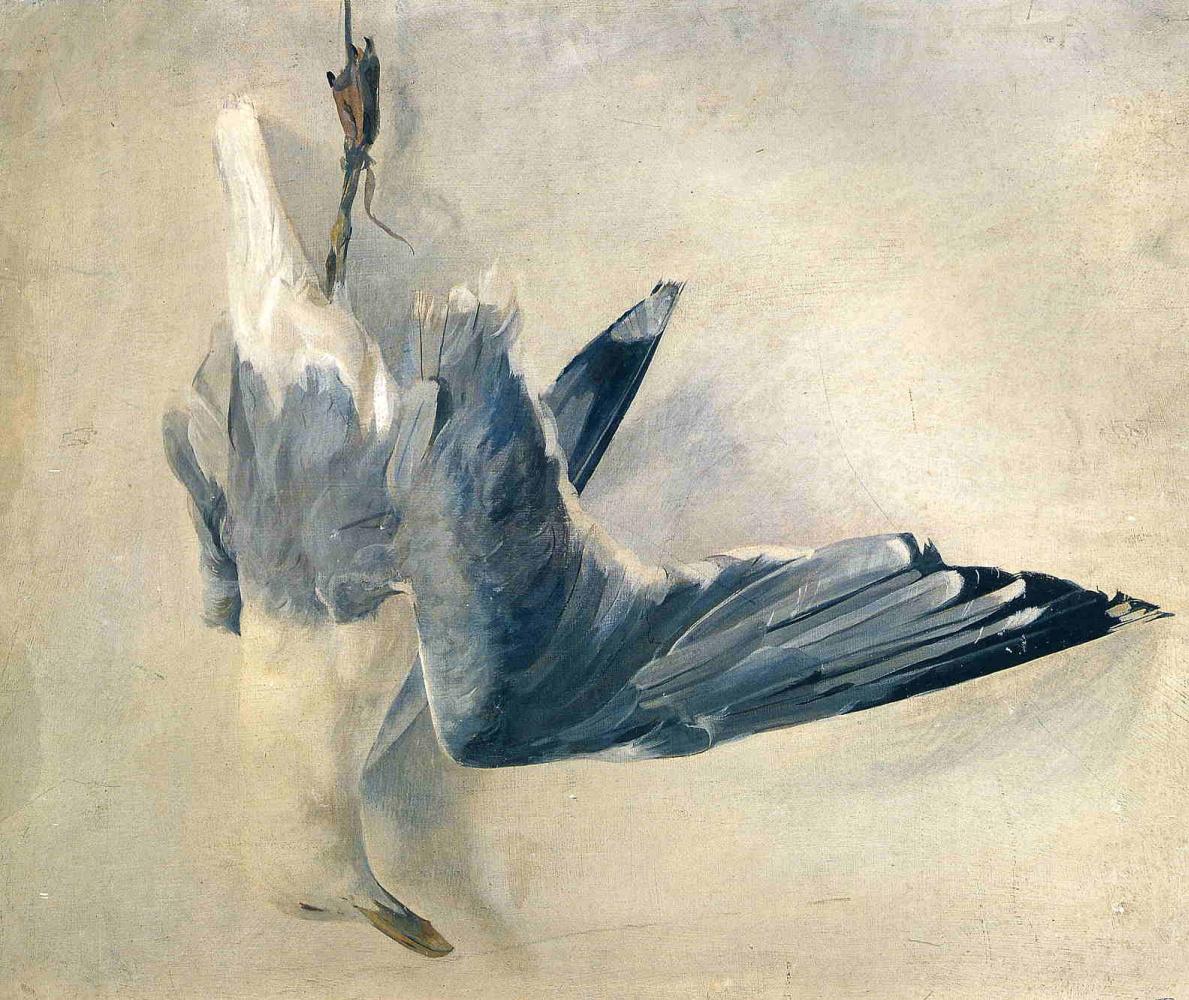 Andrew Wyeth. Dead Seagull