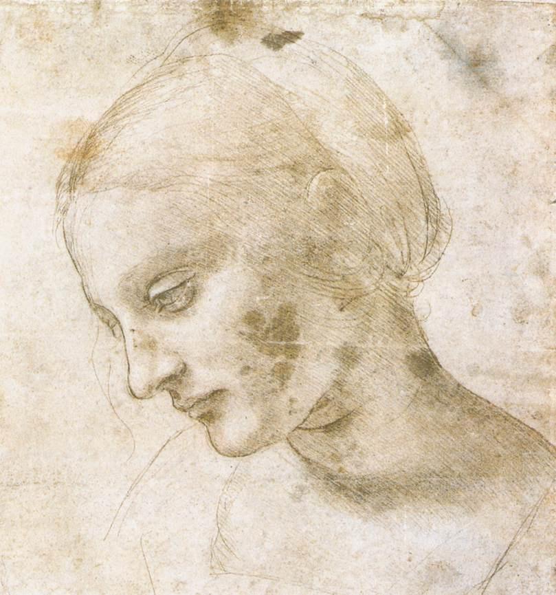 Leonardo da Vinci. Madonna Litta (sketch)