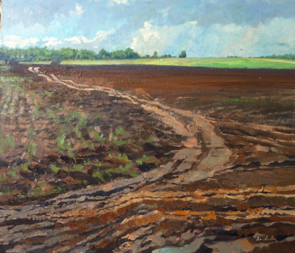 Daria Sergeevna Antonova. Road in field