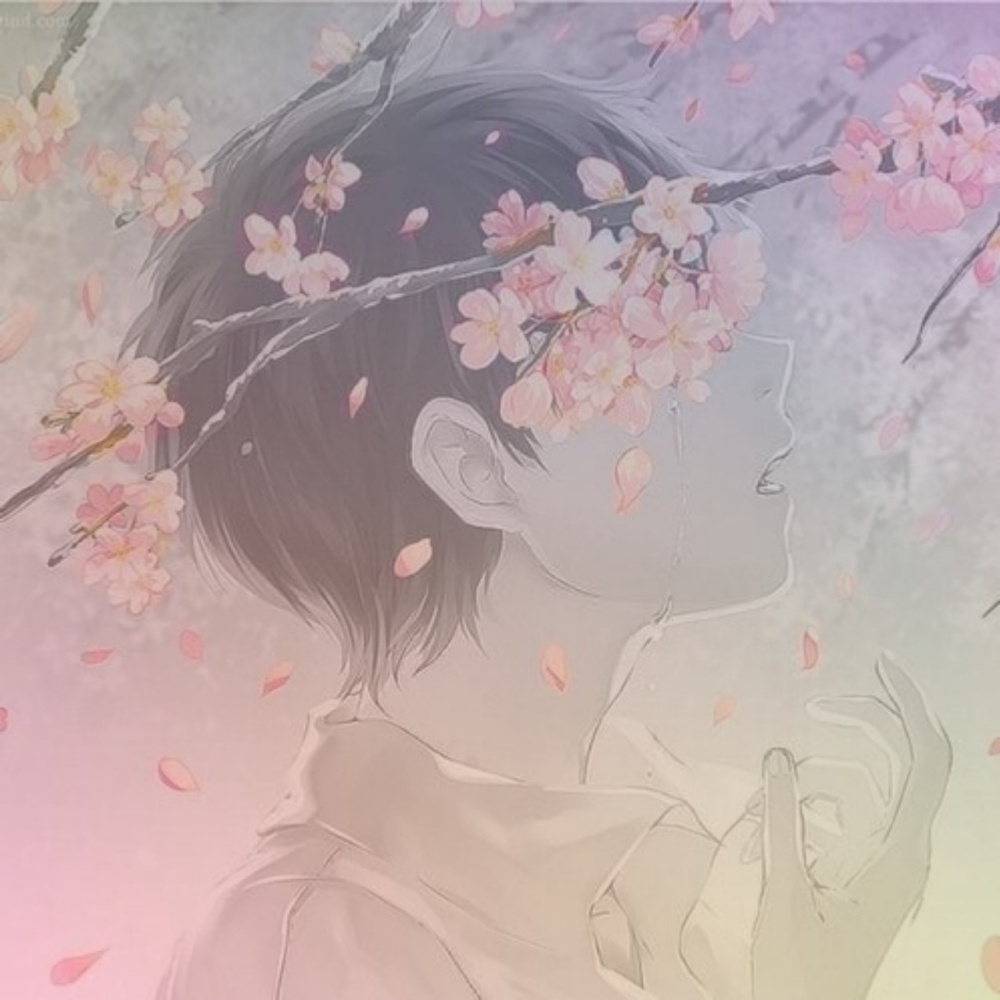 Blackpink Lisa. Anime boy and cherry blossom