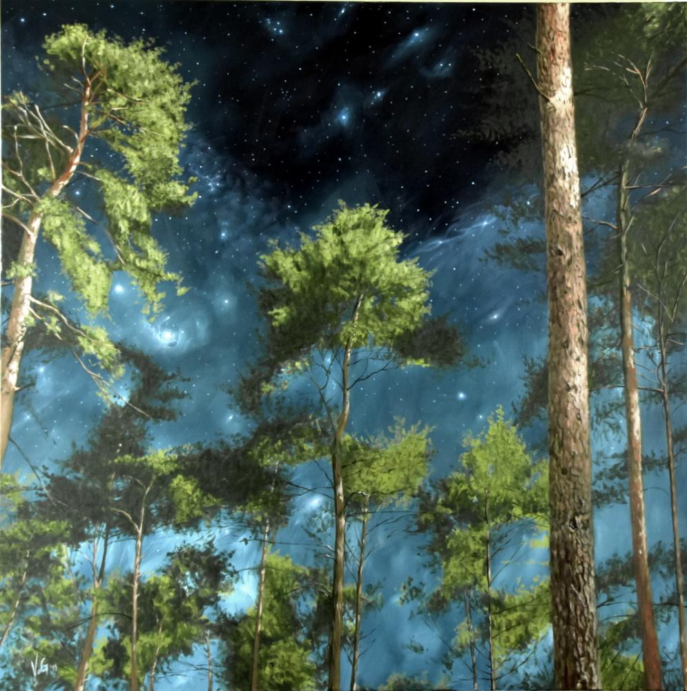 Goran Vojinovic. Night in the forest