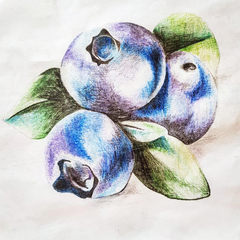 Catherine Ignatov. Berries