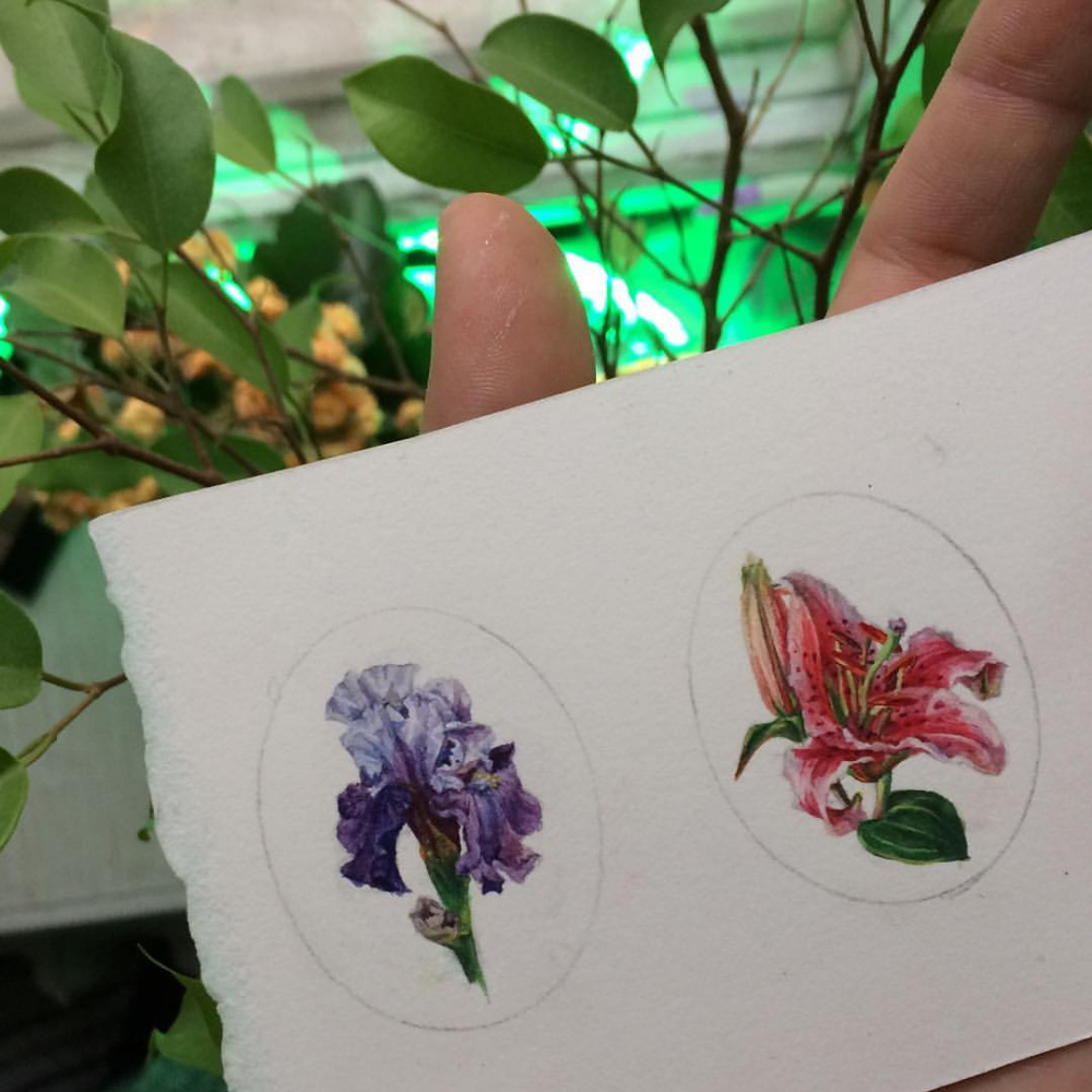 Maria Alexandrovna Vladimirova. Miniature flowers