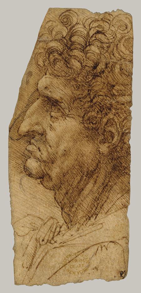 The man's head in profile