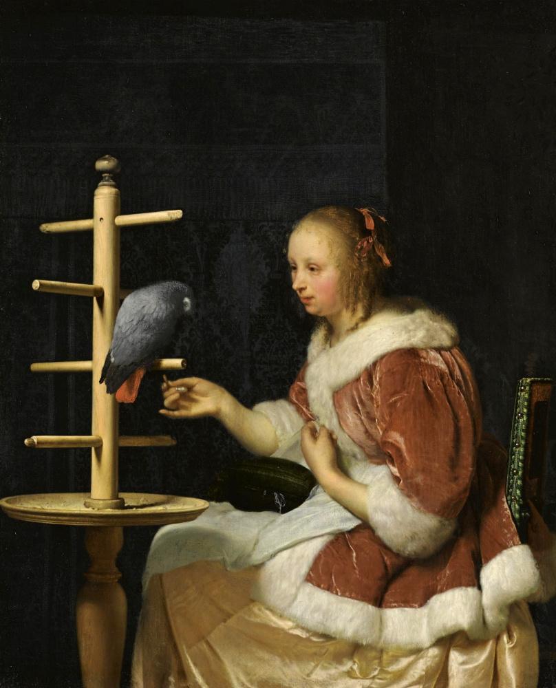 Габриель Метсю. Молодая женщина, кормящая попугая
