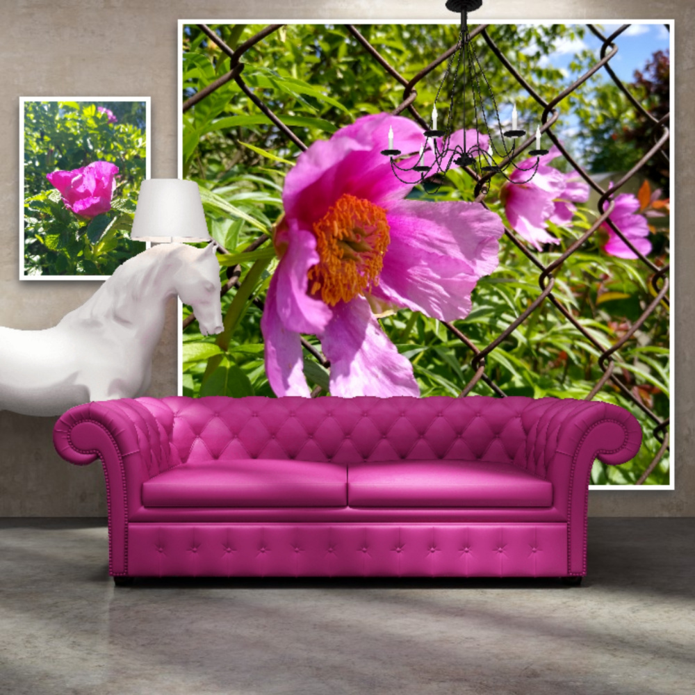Natalya Garber. Let's break through. A couple of works for a unicorn company, which at the time of the creative clinch bought a terrible sofa at the sale, which deprived them of their horns :)