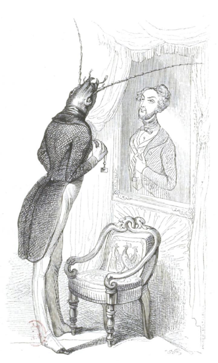 """Жан Иньяс Изидор (Жерар) Гранвиль. У зеркала. """"Сцены общественной и частной жизни животных"""""""